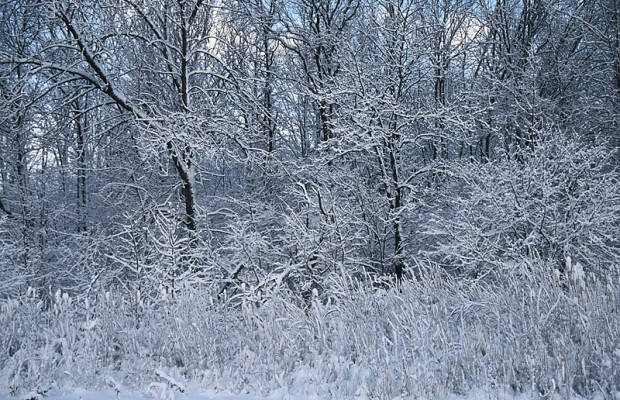 Heavy Snow Expected In Northern SD